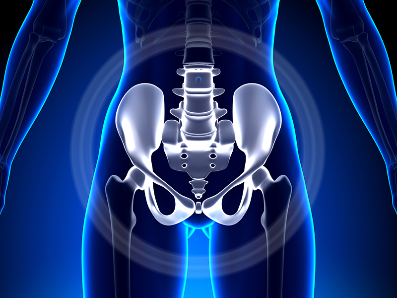 Pelvic Floor Rehabilitation Proactive Physical Therapy