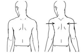 Scapular Shoulder Squeeze